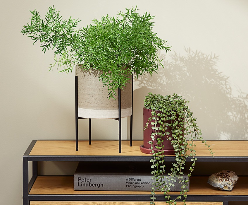 Two plant pots on a modern TV stand, one with a pointy plant and the other with a hanging plant